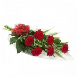 6-red-roses-flowers-zambia